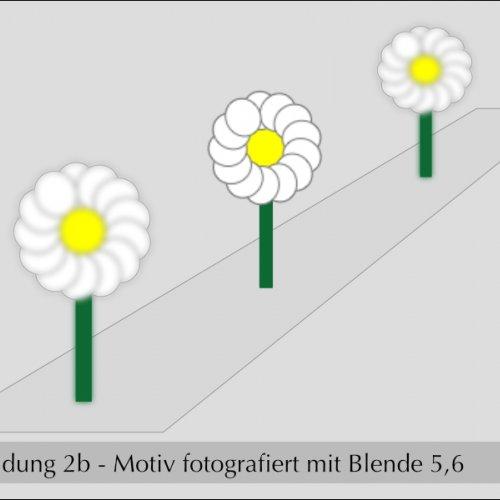 mittlere Blendenöffnung: mittlere Tiefenschärfe